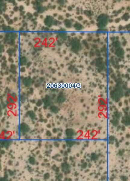 0 Reed Road, Florence, AZ 85132 (MLS #6231161) :: Conway Real Estate
