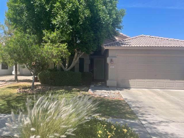 3030 E Captain Dreyfus Avenue #87, Phoenix, AZ 85032 (MLS #6233737) :: Yost Realty Group at RE/MAX Casa Grande