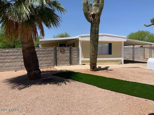 1484 S Desert View Place, Apache Junction, AZ 85120 (MLS #6233939) :: Yost Realty Group at RE/MAX Casa Grande