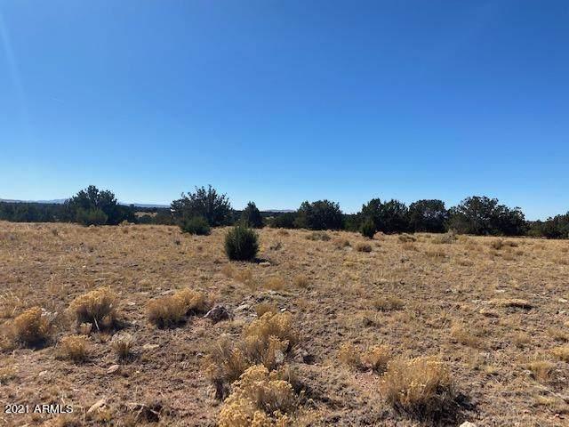 663 S Kaibab Road, Williams, AZ 86046 (MLS #6235006) :: Yost Realty Group at RE/MAX Casa Grande