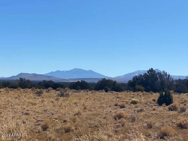 635 S Kaibab Road, Williams, AZ 86046 (MLS #6235010) :: Yost Realty Group at RE/MAX Casa Grande