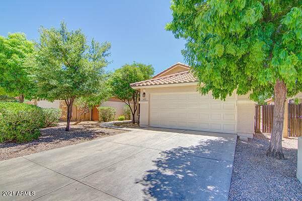 4431 E Alamo Street, San Tan Valley, AZ 85140 (MLS #6235396) :: Howe Realty