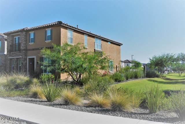 29216 N 123RD Glen, Peoria, AZ 85383 (MLS #6235633) :: The Dobbins Team