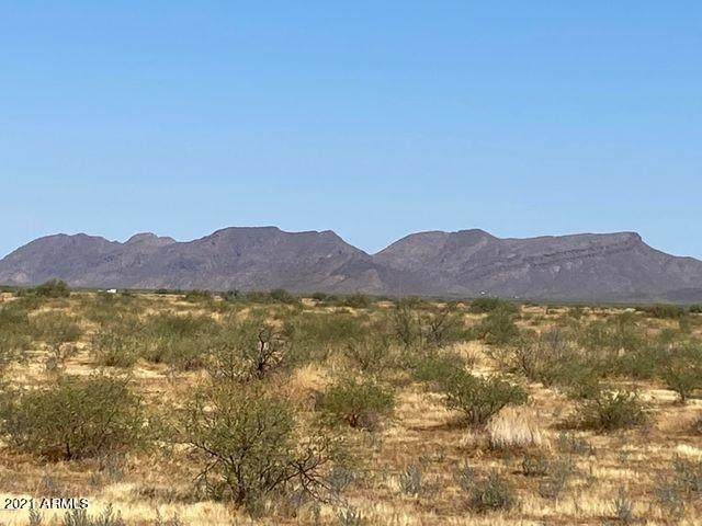 00 W Long Rifle Road, Aguila, AZ 85320 (MLS #6236052) :: Nate Martinez Team
