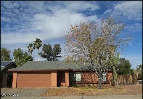 3134 E John Cabot Drive, Phoenix, AZ 85032 (MLS #6236656) :: Yost Realty Group at RE/MAX Casa Grande