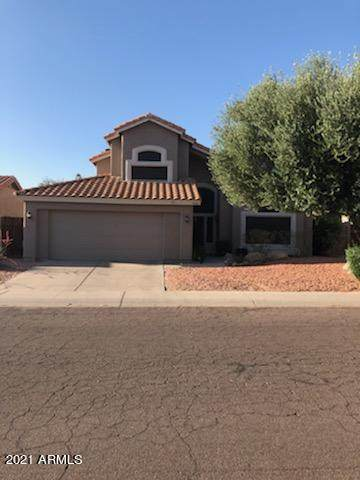 4540 E Desert Cactus Street, Phoenix, AZ 85032 (MLS #6236662) :: Sheli Stoddart Team   M.A.Z. Realty Professionals