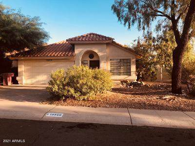 10359 E Voltaire Avenue, Scottsdale, AZ 85260 (MLS #6241757) :: Conway Real Estate