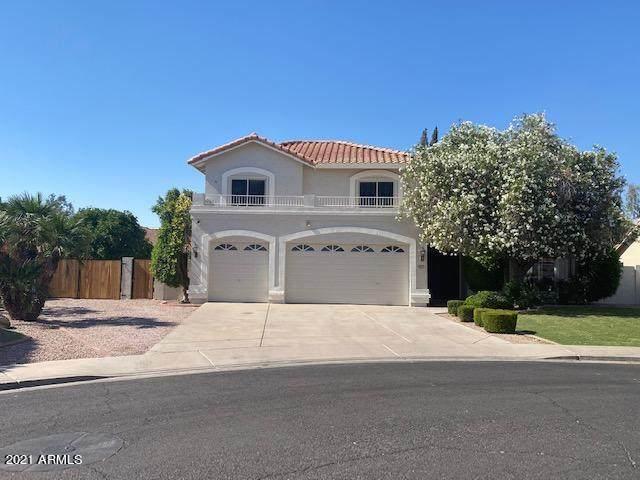 2850 E Nance Street, Mesa, AZ 85213 (MLS #6241818) :: Yost Realty Group at RE/MAX Casa Grande
