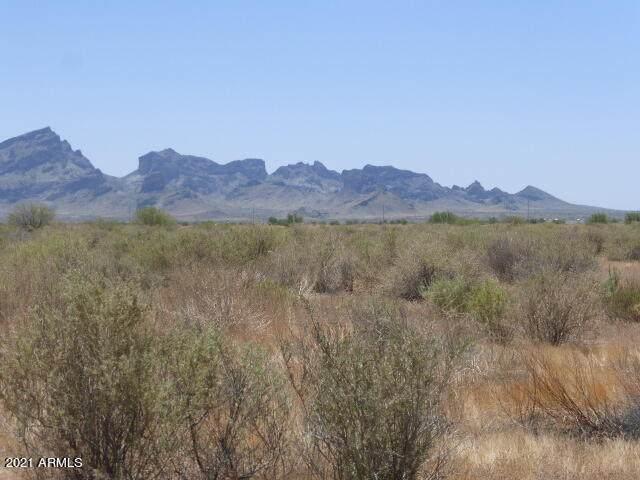 48950 W Ivy Lane, Tonopah, AZ 85354 (MLS #6242814) :: Yost Realty Group at RE/MAX Casa Grande
