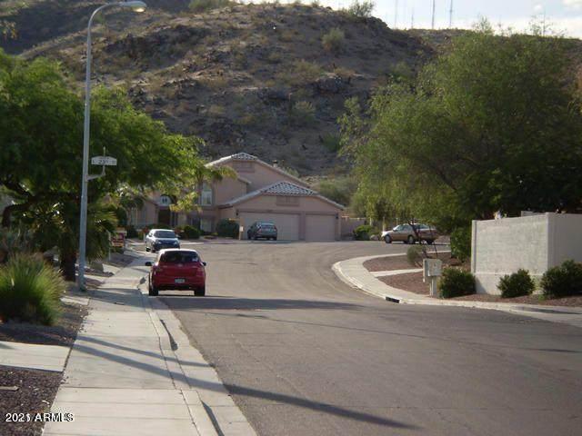 2235 E Taxidea Way, Phoenix, AZ 85048 (MLS #6242873) :: Yost Realty Group at RE/MAX Casa Grande
