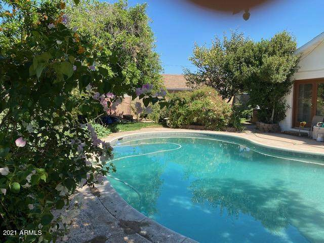 2528 W Bloomfield Road, Phoenix, AZ 85029 (MLS #6243290) :: Yost Realty Group at RE/MAX Casa Grande