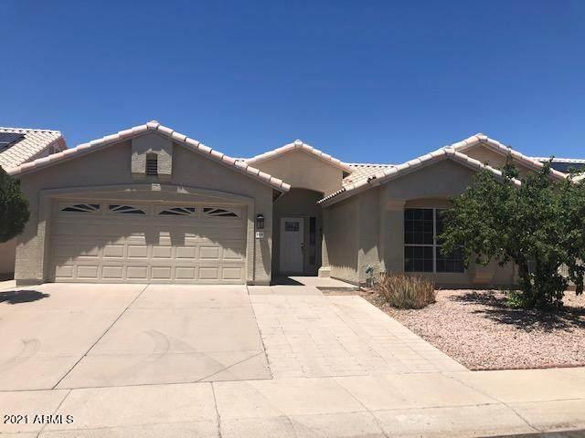 3220 E Rosemonte Drive, Phoenix, AZ 85050 (MLS #6243566) :: Yost Realty Group at RE/MAX Casa Grande