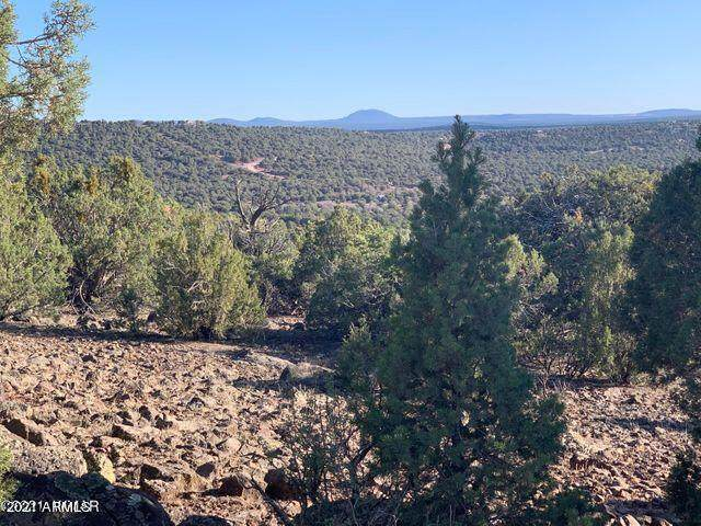Show Low Pines Unit 10 Lot #382, Concho, AZ 85924 (MLS #6243646) :: Openshaw Real Estate Group in partnership with The Jesse Herfel Real Estate Group