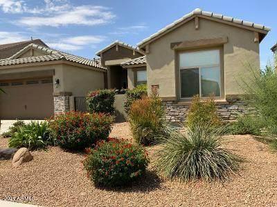22211 E Via Del Oro, Queen Creek, AZ 85142 (MLS #6246457) :: The Helping Hands Team