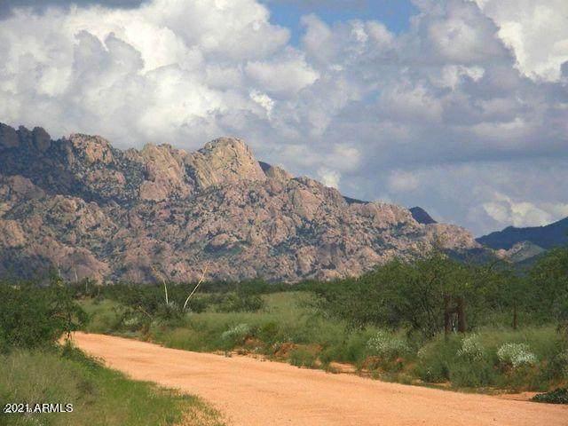 TBD E Tom Jeffords Drive, Saint David, AZ 85630 (MLS #6246980) :: Dave Fernandez Team | HomeSmart