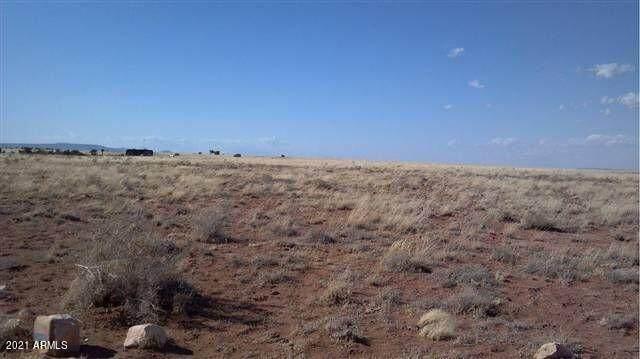 Lot 487 Cjevelon Canyon Ranch - Photo 1