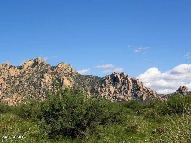 TBD E Diamondback Road, Saint David, AZ 85630 (MLS #6248611) :: Yost Realty Group at RE/MAX Casa Grande