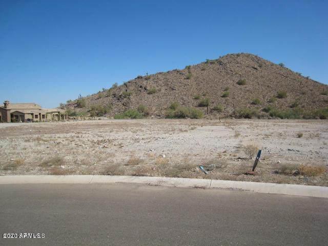 21335 W Jojoba Court, Buckeye, AZ 85396 (MLS #6249800) :: CANAM Realty Group