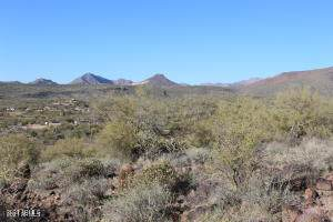XXX N Central Avenue, New River, AZ 85087 (MLS #6249850) :: The Riddle Group