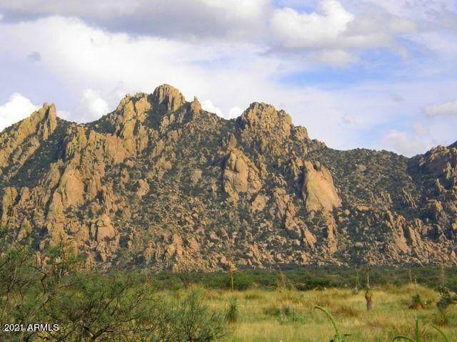 TBD E Horse Ranch Road, Saint David, AZ 85630 (MLS #6250448) :: Yost Realty Group at RE/MAX Casa Grande