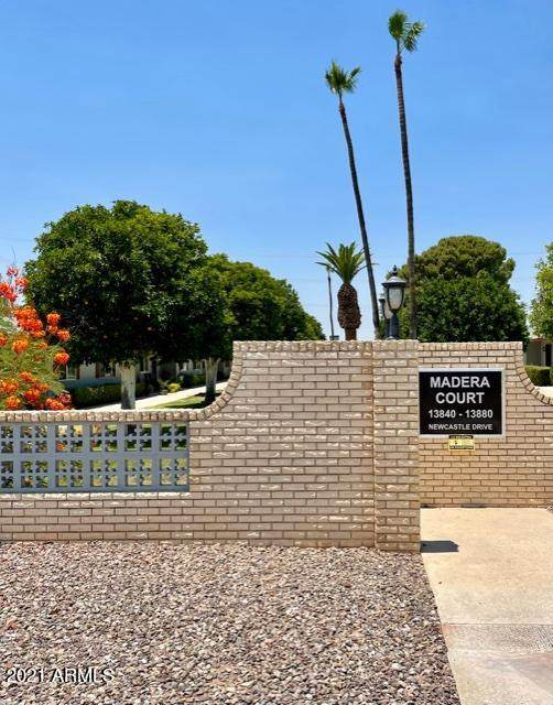 13874 N Newcastle Drive, Sun City, AZ 85351 (MLS #6250520) :: The Riddle Group
