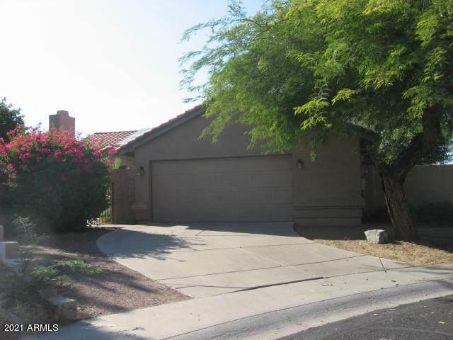 13614 N 19TH Street N, Phoenix, AZ 85022 (MLS #6250602) :: Dave Fernandez Team | HomeSmart