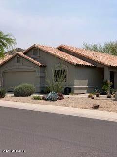 20260 N 17TH Place, Phoenix, AZ 85024 (MLS #6250744) :: The AZ Performance PLUS+ Team