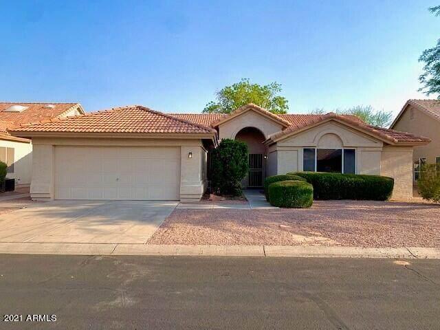 9501 E Rocky Lake Drive, Sun Lakes, AZ 85248 (MLS #6252555) :: Midland Real Estate Alliance