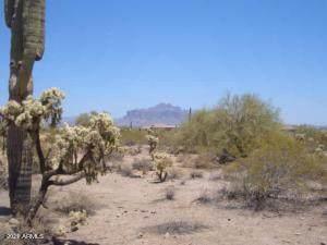 0 E 105th And Jensen Street, Mesa, AZ 85207 (MLS #6252816) :: Yost Realty Group at RE/MAX Casa Grande