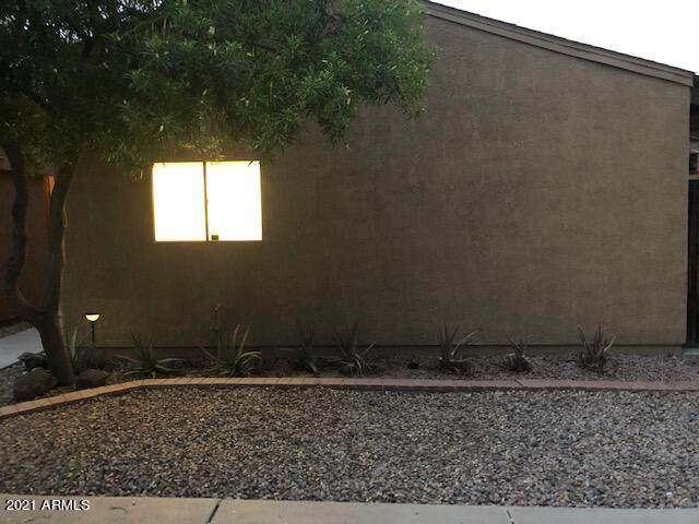 910 S Melody Lane, Tempe, AZ 85281 (MLS #6252875) :: Openshaw Real Estate Group in partnership with The Jesse Herfel Real Estate Group