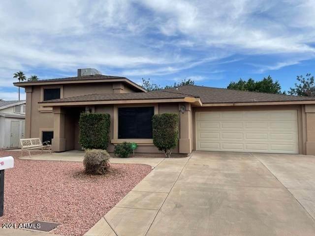 777 W Rosewood Avenue, Phoenix, AZ 85029 (MLS #6254295) :: Yost Realty Group at RE/MAX Casa Grande