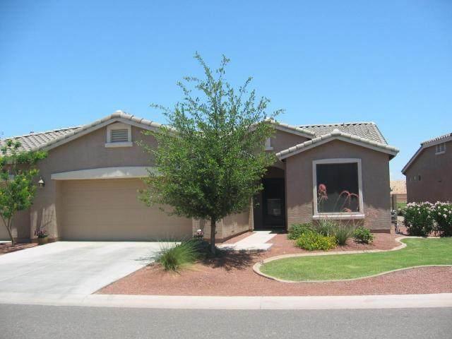 20543 N Lemon Drop Drive, Maricopa, AZ 85138 (MLS #6254708) :: Dijkstra & Co.