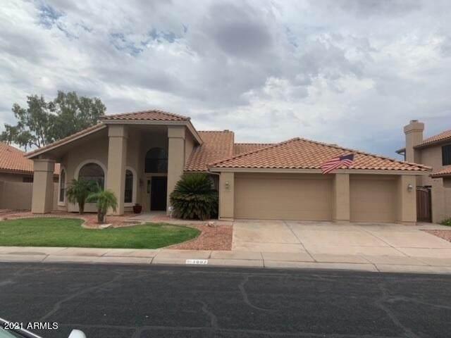1007 W Iris Drive, Gilbert, AZ 85233 (MLS #6254825) :: Jonny West Real Estate
