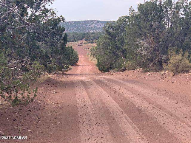 Show Low Pines Unit 8 Lots 76, 77 & 78, Concho, AZ 85924 (MLS #6255741) :: The Everest Team at eXp Realty