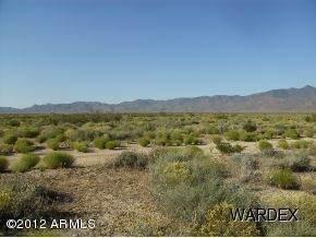 9325 N Singletree Drive, Kingman, AZ 86401 (MLS #6255942) :: Fred Delgado Real Estate Group