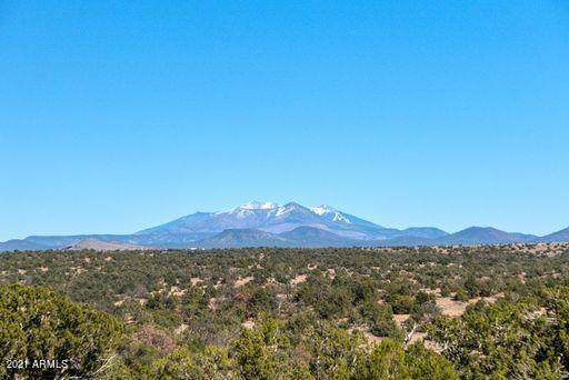 5102 S Sun Dog Trail, Williams, AZ 86046 (MLS #6257306) :: Yost Realty Group at RE/MAX Casa Grande