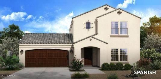 xxxx W Horseshoe Trails Trail, Tonopah, AZ 85354 (MLS #6257615) :: The Daniel Montez Real Estate Group