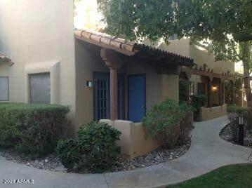 1446 E Grovers Avenue #14, Phoenix, AZ 85022 (MLS #6259452) :: Yost Realty Group at RE/MAX Casa Grande