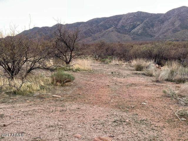 3G W Elmer Lane, Tonto Basin, AZ 85553 (MLS #6260149) :: Yost Realty Group at RE/MAX Casa Grande