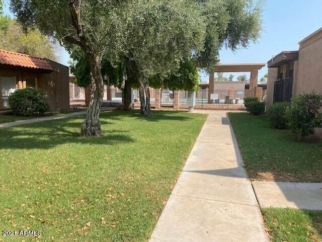 7907 N 61ST Avenue, Glendale, AZ 85301 (MLS #6265630) :: The Laughton Team
