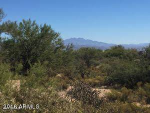29922 N Miradar Court, Scottsdale, AZ 85262 (MLS #6268736) :: The Dobbins Team