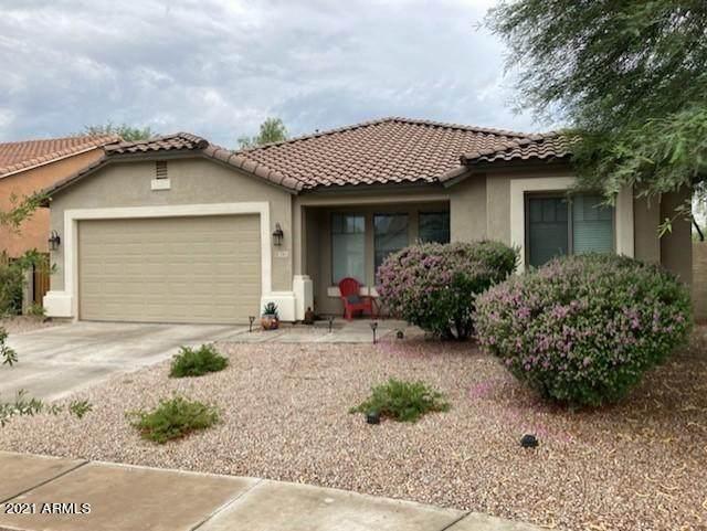 3365 E Aris Drive, Gilbert, AZ 85298 (MLS #6269121) :: Yost Realty Group at RE/MAX Casa Grande