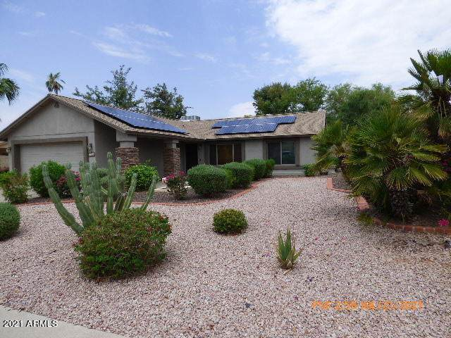 3714 E Rosemonte Drive, Phoenix, AZ 85050 (MLS #6269172) :: The Newman Team