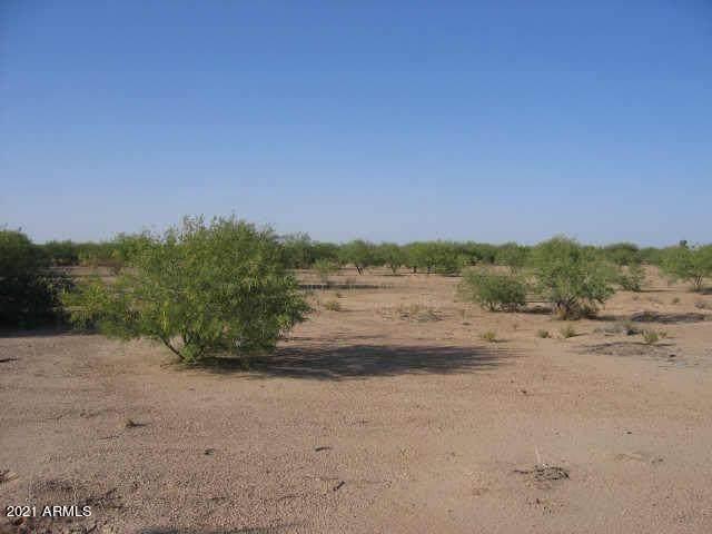 2930 W Yuma Drive, Eloy, AZ 85131 (MLS #6269364) :: Yost Realty Group at RE/MAX Casa Grande