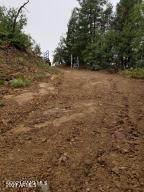 0 Mt. Union Road - Photo 5