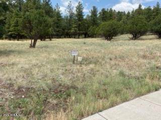 249 Fairway Drive, Williams, AZ 86046 (MLS #6269481) :: The Newman Team