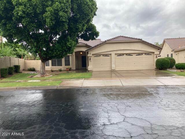 4953 S Moss Drive, Chandler, AZ 85248 (MLS #6270122) :: Service First Realty
