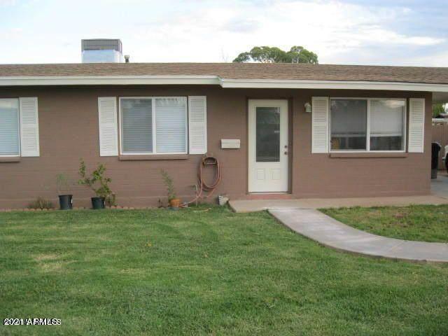 774 E Carla Vista Drive, Chandler, AZ 85225 (MLS #6270878) :: Kepple Real Estate Group