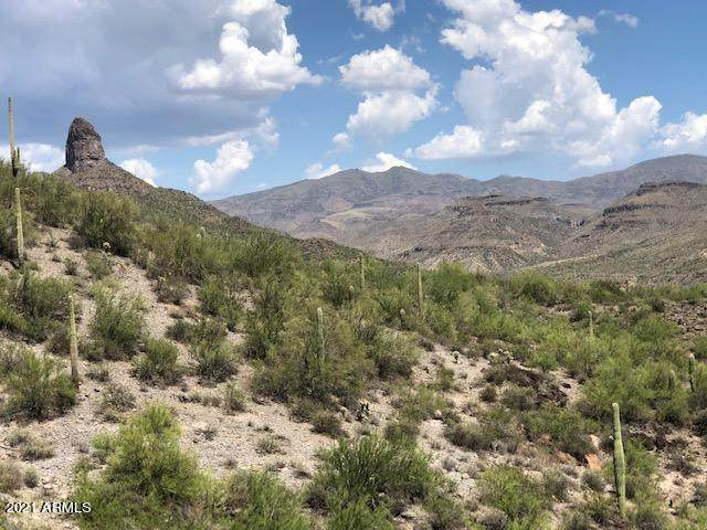 32577 S Shangrila Drive, Black Canyon City, AZ 85324 (MLS #6271271) :: Kepple Real Estate Group