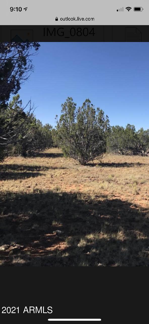 NA Na, White Mountain Lake, AZ 85912 (MLS #6271301) :: Synergy Real Estate Partners